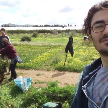 Ozkan, che sta svolgendo il suo SVE a Palermo con HRYO racconta l'orto BhRYO.