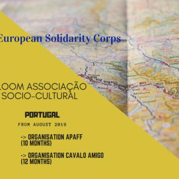 Vuoi andare in Portogallo per un volontariato europeo?